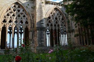 Jardín del claustro de la Seu Vella