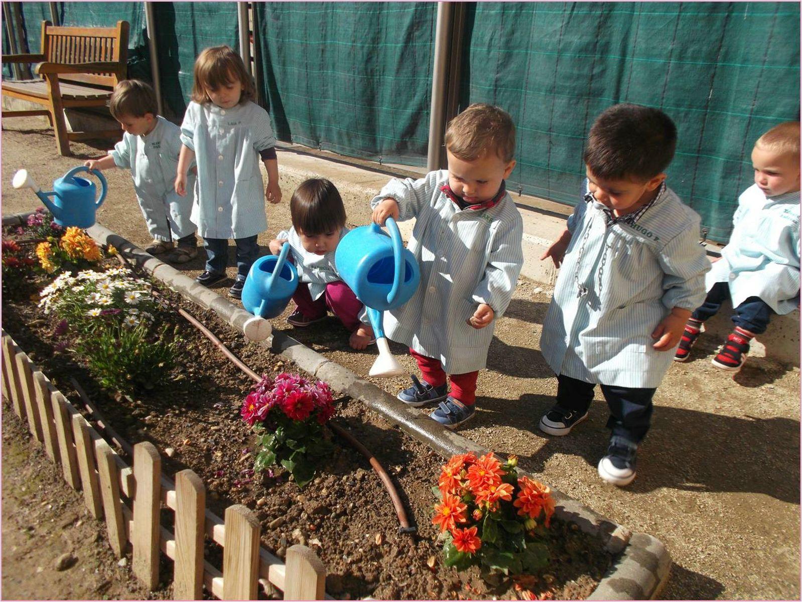 La educaci n infantil en lleida en la primera divisi n - Huerto y jardin ...
