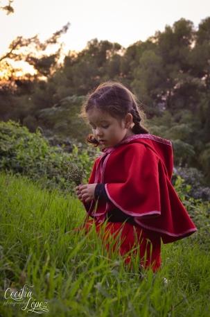 Caperucita roja / Fotos de cuento. Cecília López